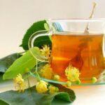 Ройбос – африканский чай красоты и бодрости