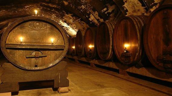 Топ-5: самые старые в мире вина