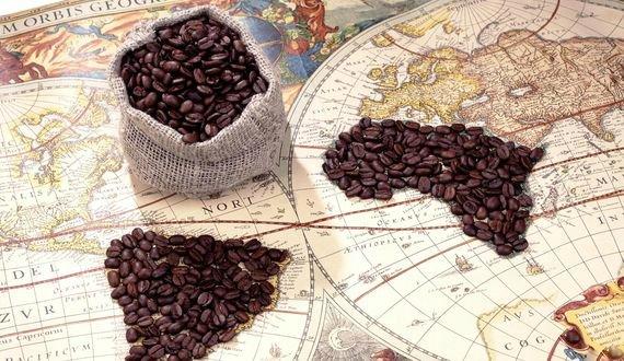 Топ 10: самые дорогие сорта кофе