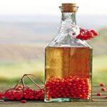 Яржебяк – польская рябиновая водка